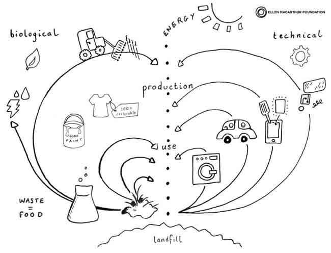 The Future Of Design Will Be Circular Design